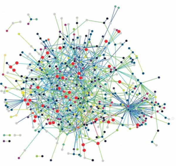 the_protein_interaction_network_of_treponema_pallidum.png